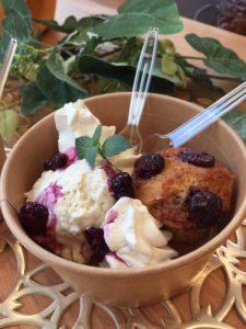vegan icecream and GF muffin